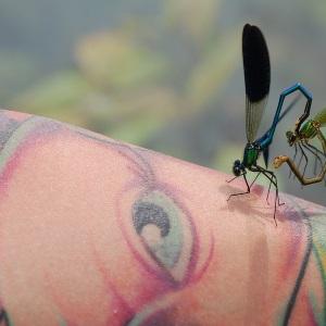 tattoo-thumb